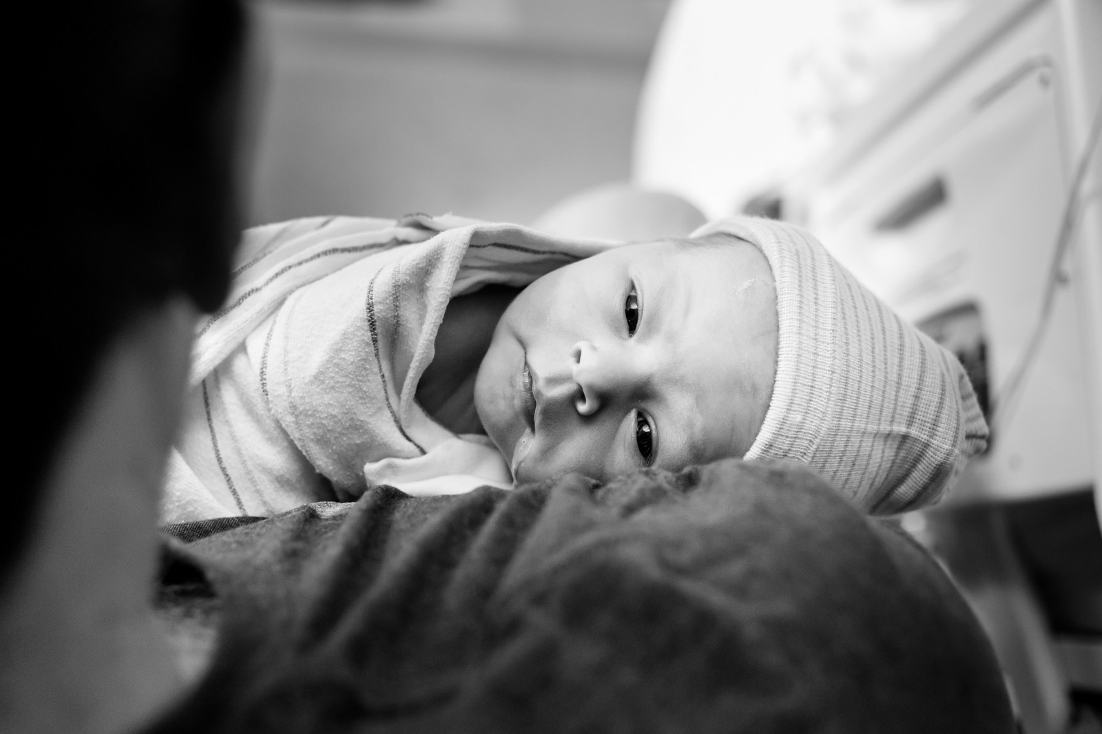 Boston and Cambridge, MA newborn photography by Emily Sterne Photography